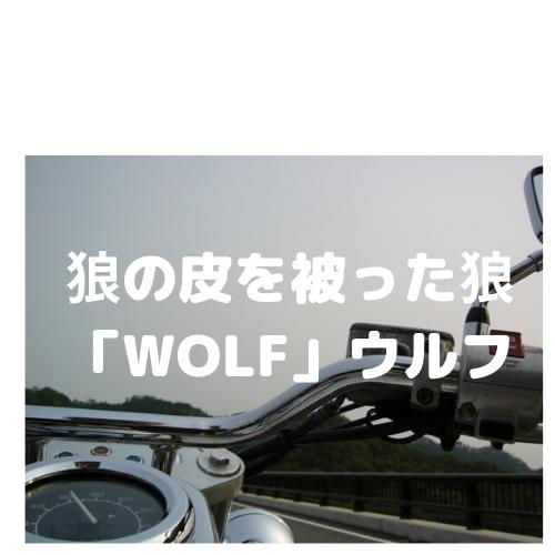 狼の皮を被った狼「WOLF」ウルフ