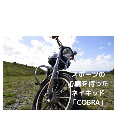 スポーツの心臓を持ったネイキッド「COBRA」コブラ